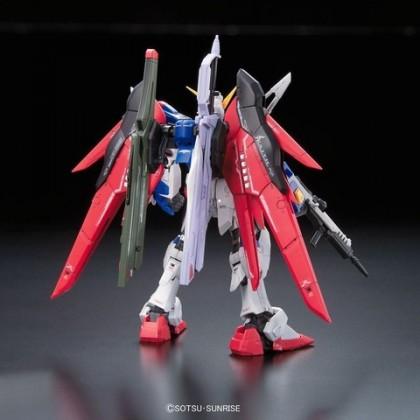 [Gundam Gang] RG Destiny Gundam